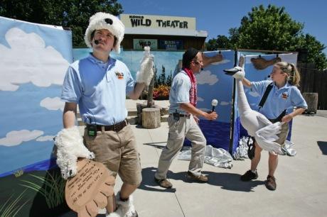 MJS Wildlife Theater