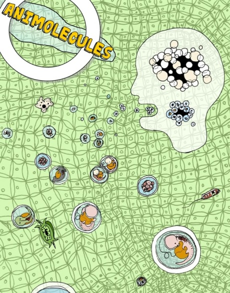 animolecules_poster